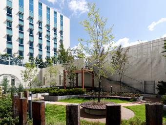 リハビリテーション庭園(病院4階)の写真